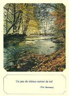 CARTE POSTALE  - FANTAISIE  - CITATION - France