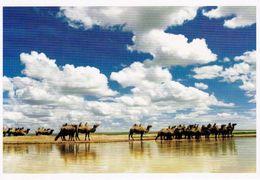 1 AK China * Camels By The Lake * - China