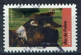 France, Poitou Donkey, 2017, VFU Self-adhesive - Frankrijk