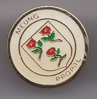 Pin's Meung Propre Dpt 45   Réf 7423JL - Villes