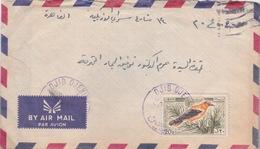 LEBANON LIBAN EGYPTE 1965 LETTRE COVER DJIB DENINE POSTMARK - Liban
