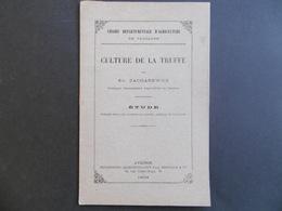 Livret Sur La CULTURE De La TRUFFE  ( VAUCLUSE )  1903  AVIGNON         -  Par ZACHAREWICZ - Culture