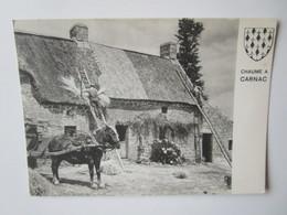 Chaume A Carnac. Couverture De La Chaumiere. Jos P.279 Postmarked 1974 - Carnac