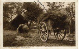 1914 - Noord Brabant - Dorpsleven - Vie De Village - Other