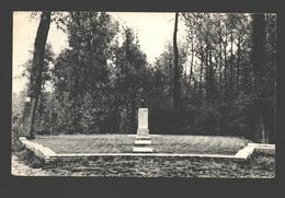 Roisin - Caillou Qui Bique (Le Monument Verharen) - Honnelles
