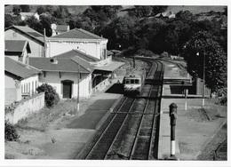 Tarare EAD  Photo 10 X 15 - Trains