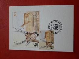 L'Argentine FDC Un Cerf Des Pampas Ozotoceros Bezoarticus 2002 - FDC