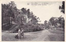 Den Haan Aan Zee, Het Bosje (pk51870) - De Haan