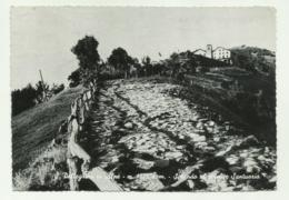 S.PELLEGRINO IN ALPE - SALENDO DAL CELEBRE SANTUARIO  - VIAGGIATA FG - Lucca