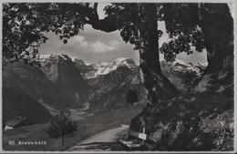 Braunwald - Alpenweg Mit Bank - GL Glaris