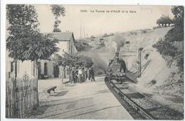 Le Tunnel De VIAUR Et La Gare (Aveyron) - France
