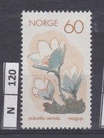 NORVEGIA   1970Protezione Della Naura 60 Nuovo - Norvegia
