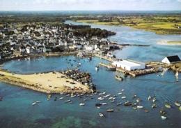29 - Finistere -  LESCONIL - Rentrée De Peche Au Port - Lesconil