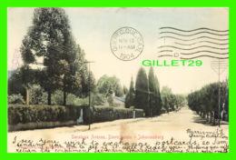 JOHANNESBURG, AFRIQUE DU SUD - SARATOGA AVENUE, DOORNFONTEIN - TRAVEL IN 1904 - PUB. BY SALIO EPSTEIN & CO - - Afrique Du Sud