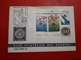 L'Uruguay FDC Une Exposition Brasiliana 93 Avec Bloc Avec Image De Football - Uruguay