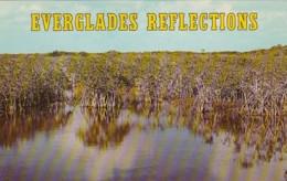 Florida Everglades National Park Everglades Reflections - United States