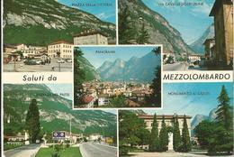 SALUTI DA MEZZOLOMBARDO  (59) - Saluti Da.../ Gruss Aus...