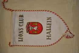 Rare Fanion Lion's Club  Hallein - Organisations