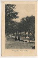 CALTAGIRONE VIALE REGINA ELENA 1911 - Catania
