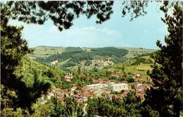 BELGRADO - BEOGRAD - SLOGA BASILEGRAD  (SERBIA) - Serbia