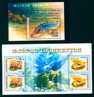 Tajikistan 2018 Fish Mushroom Mushrooms Circle Overprint Ovpt New Face Val. 2 Bl. S/S MNH - Tadjikistan