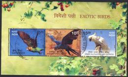India 2016 MS  Used Exotic Birds  Bird Oiseaux Oiseau Parrot - Papagayos