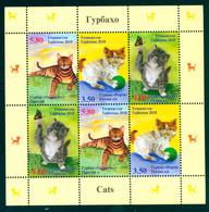 Tajikistan 2018 Cat Cats Shtl Klbg MNH - Tadjikistan
