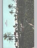 JAFFA Deutsche Kolonie Color Litho On Turkey Postcard C. 1908 - Israel