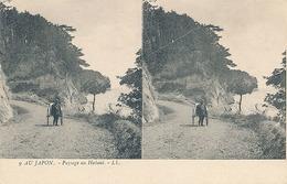 AU JAPON - N° 9 - PAYSAGE AU HAKOMI (CARTE STEREOSCOPIQUE) - Cartes Stéréoscopiques