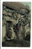 CPA - Cartes Postales FRANCE - Cueillette Des Glycines-1903 -  S3797 - Fleurs