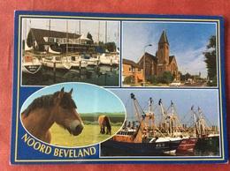Nederland Pays-Bas Holland Noord Beveland ( Kerk Boot Paard ) - Nederland