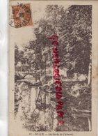 77 - MELUN- LES BORDS DE L' ALMONT - Melun