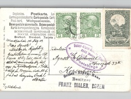 Süd-Tirol Seiner-Alpen-Haus Tirol K.K.POSTABLAGE Violett Oval Mit 3 HELLER Vignette SEKTION A.OE.A.V. Franz Dialer Bozen - Bolzano (Bozen)