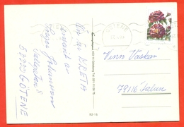 Sweden 1994.Postcard Passed The Mail. Roses. - Roses