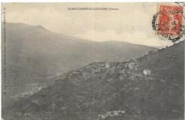 20. CORSE  OLMO CAMPILE CASACONI - France