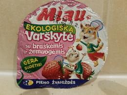 Yogurt Top Cats - Milk Tops (Milk Lids)