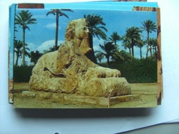 Egypte Egypt Giza Spinx Of Sakkarah - Sphynx