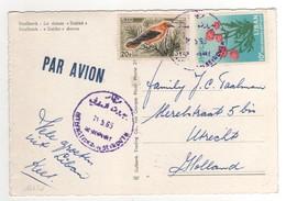 Beaux Timbres , Stamps Sur Cp , Carte , Postcard Du 11/05/1965 ?? - Liban