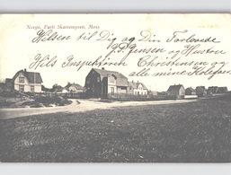 Parti Av SKARREMYREN MOSS Villas Sent 1916 - Norwegen