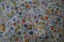 België - 500 Zegels/stamps Bloemen Fleurs - Timbres