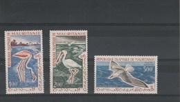 Mauritanie Yvert  PA 18 à 20 ** Neufs Sans Charnière -  Oiseaux - Mauritanie (1960-...)