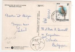 """Timbre , Stamp Yvert N°  565 """" Oiseau """" Sur Cp , Carte , Postcard Du 14/01/1981 - Côte D'Ivoire (1960-...)"""