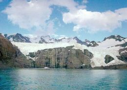 1 AK Antarctica South Georgia Island * Gletscher Bei Gold Harbour - Britisches Überseegebiet Südgeorgien * - Postcards