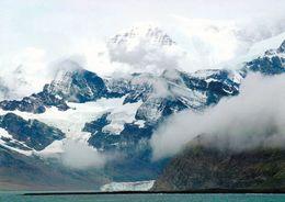 1 AK Antarctica * South Georgia Island * Coast Near Grytviken * Britisches Überseegebiet - South Atlanic Ocean - Postcards