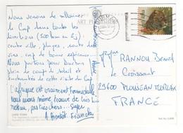 """Timbre , Stamp """" Panthère """" Sur Cp , Carte , Postcard De 2004 - Afrique Du Sud (1961-...)"""