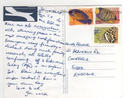 """Timbres , Stamps """" Poisson , Papillon """" Sur Cp , Carte , Postcard Du 04/05/2004 - Afrique Du Sud (1961-...)"""