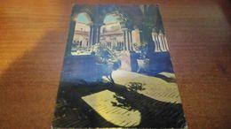 Cartolina: Chiara Della Colomba  Viaggiata (a31) - Non Classificati