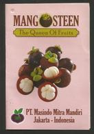 # MANGO MANGOSTEEN MACEDONIA  Tag Balise Etiqueta Anhänger Cartellino Fruits Frutas Frutta Früchte - Fruit En Groenten