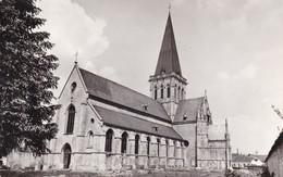 Asse St Martinuskerk - Asse