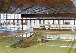 1 AK Germany * Zinnowitz - Meerwasserhallenbad Das Kinderplanschbecken - Feriendienst Der IG Wismut - DDR Karte * - Zinnowitz